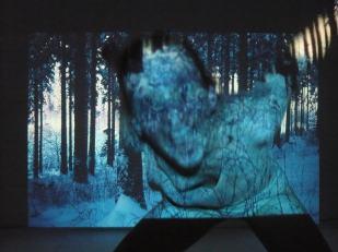 'Deep Forest II' | Mädchenzeit I (2011) Performance & Photographie, div. Formate