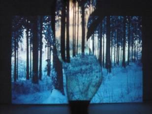 'Deep Forest III' | Mädchenzeit I (2011) Performance & Photographie, div. Formate