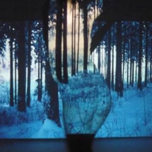 'Deep Forest III'   Mädchenzeit I (2011) Performance & Photographie, div. Formate